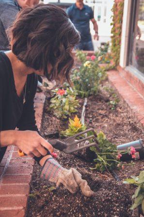 stress tuinieren